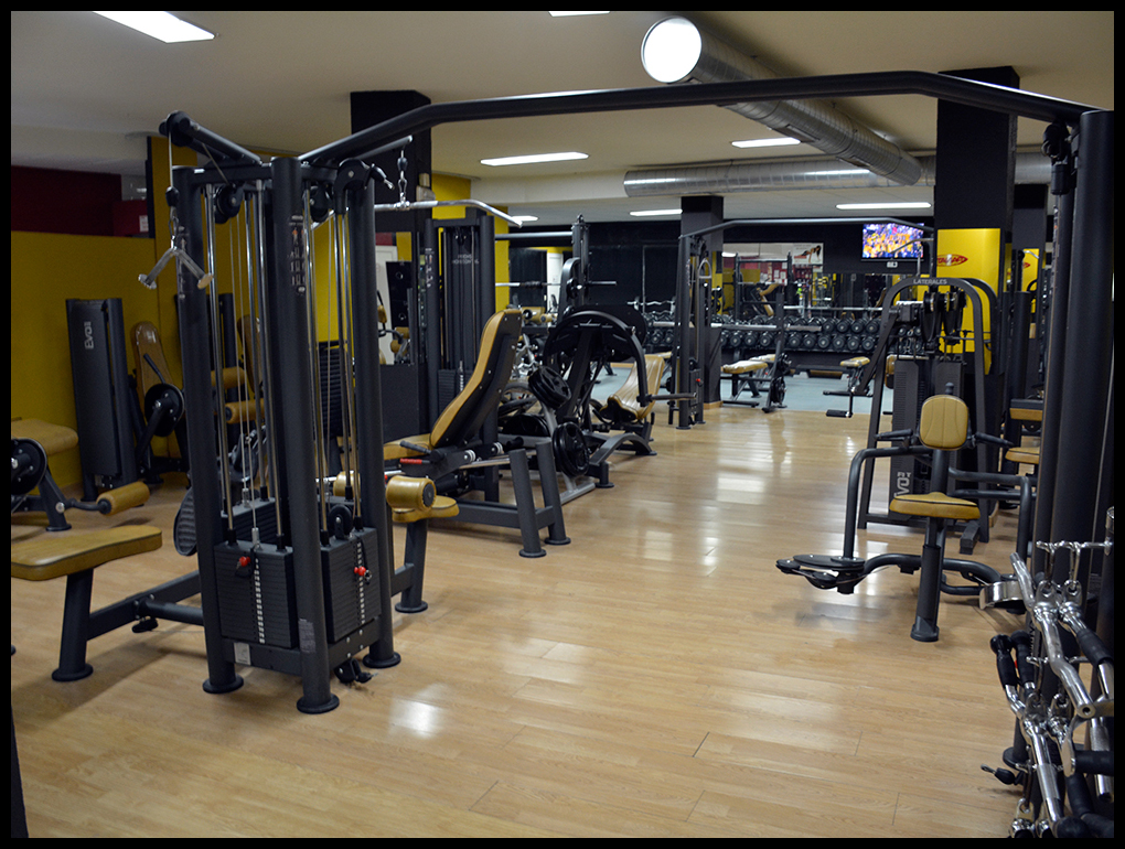 Sala musculaci n arrayanes fitness center martos ja n for Gimnasio musculacion